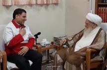 گزارش تصویری: دیدار رئیس جمعیت هلالاحمر کشور، آقای دکتر علی اصغر پیوندی با مرجع عالیقدر حضرت آیتالله العظمی صافی گلپایگانی